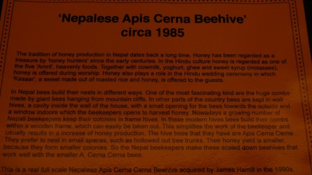 Nepalese Apis Cerna Beehive description