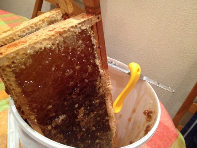 Honey bucket