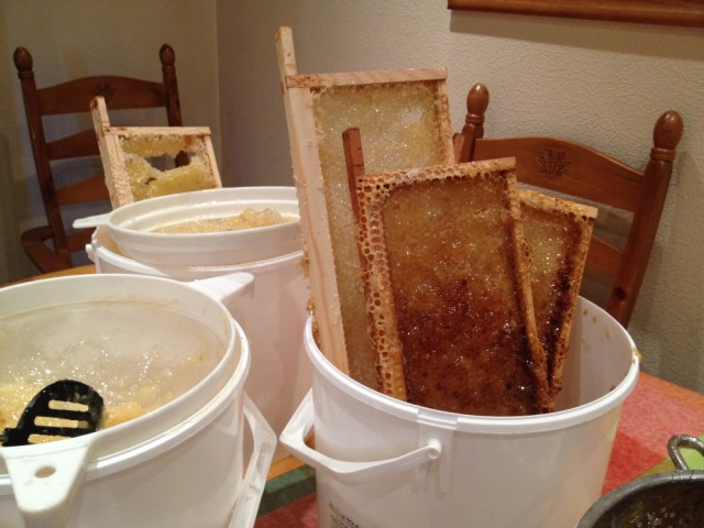 Honey buckets