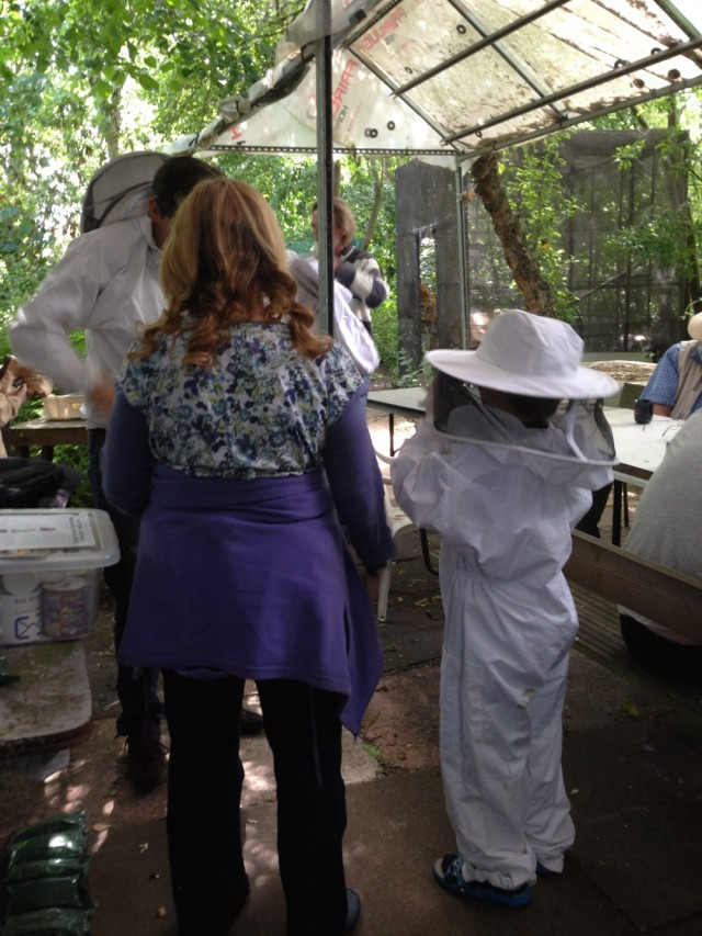 Putting on bee suits