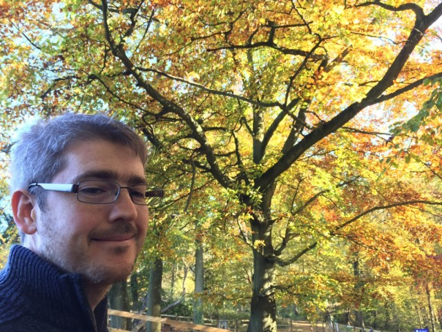 Drew and autumn leaves