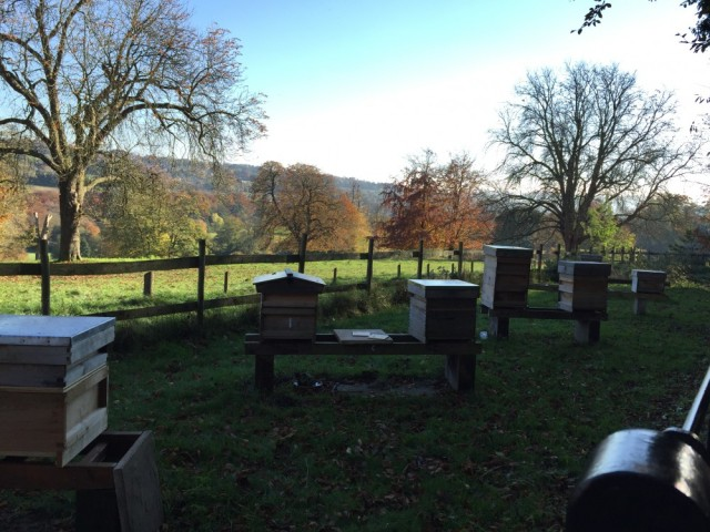 Bee hives, Hughenden Manor