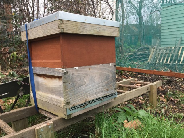 Allotment hive