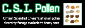 CSI Pollen logo
