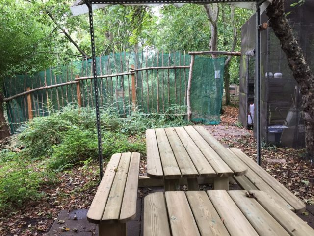 Apiary benches