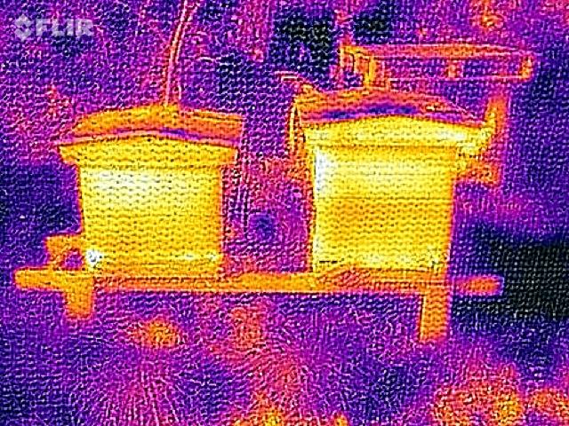 FLIR hives