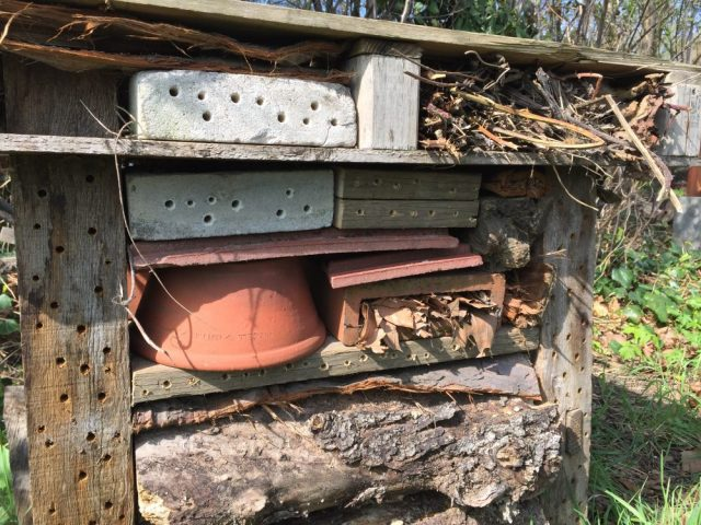 Tom's solitary bee palace