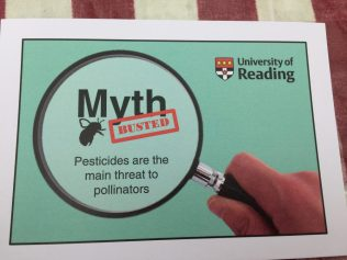 Bee pollination myth