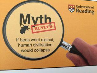 Bee pollination myth