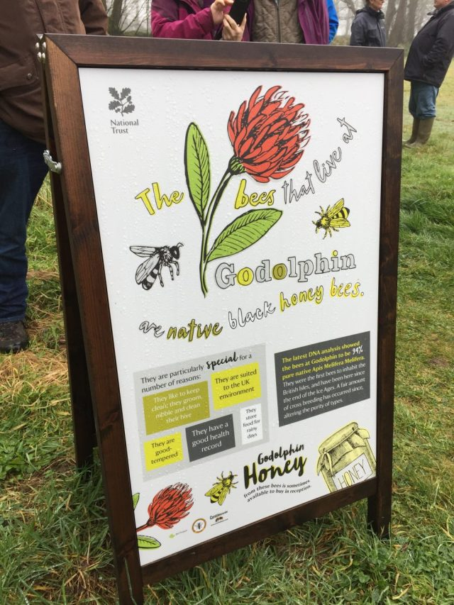 The bees that live at Godolphin poster