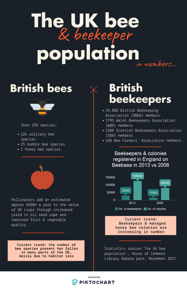 The UK bee & beekeeper infographic by Emily Scott