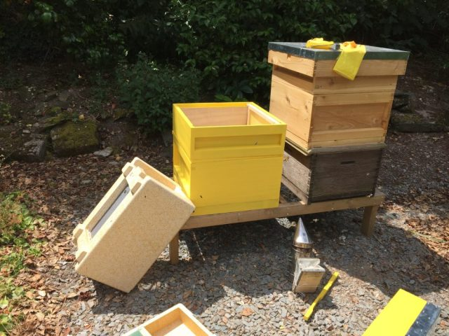New hives being put back together