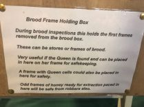 Brood frame holding box