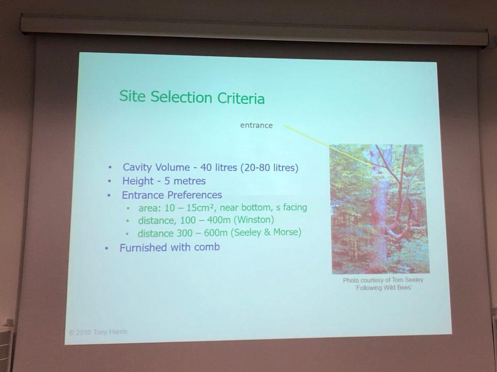 Swarm site selection criteria