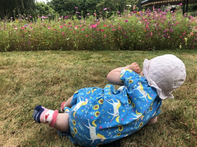 Wildflowers and baby